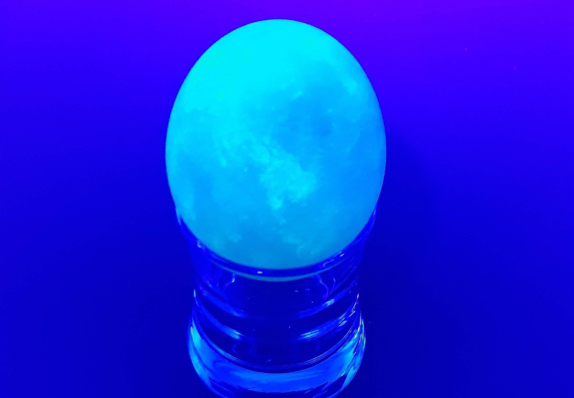 7 Experimentos fluorescentes